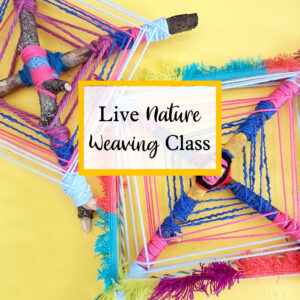 live online nature weaving class for children with the craft corner
